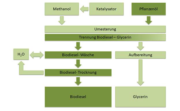 Biodiesel Herstellung Produktion