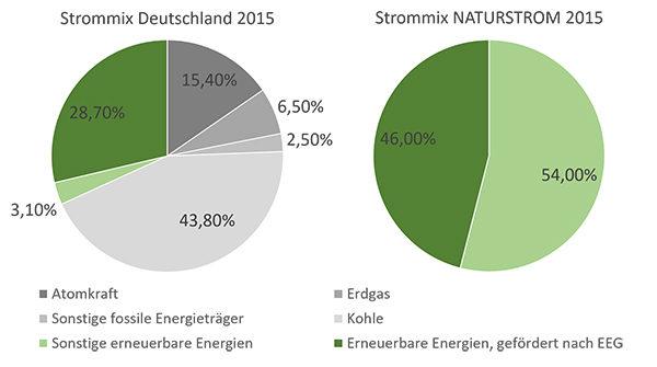 NATURSTROM Strommix