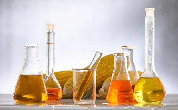 Titelbild Biokraftstoffe Biomasse