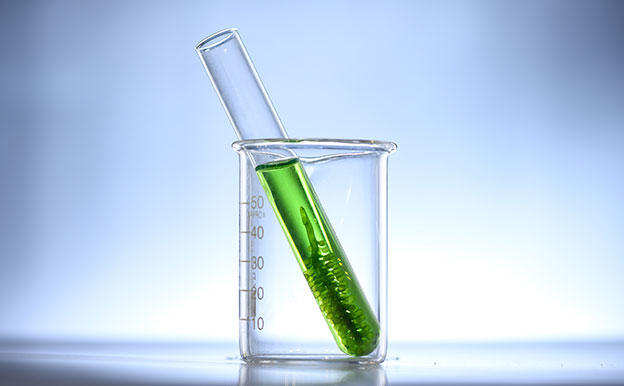 Titelbild Biokraftstoffe Algen